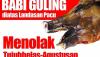 (Deutsch) Glückwünsche zum 69. Unabhängigkeitstag der Republik Indonesien