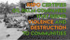 RSPO: 14 years of failure to eliminate violence and destruction from the industrial palm oil sector