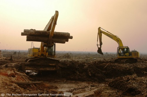 clearing land bulldozers