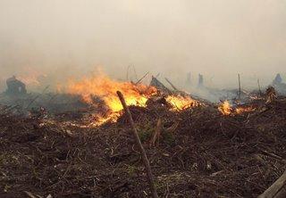 kebakaran_Kerry_Nordin